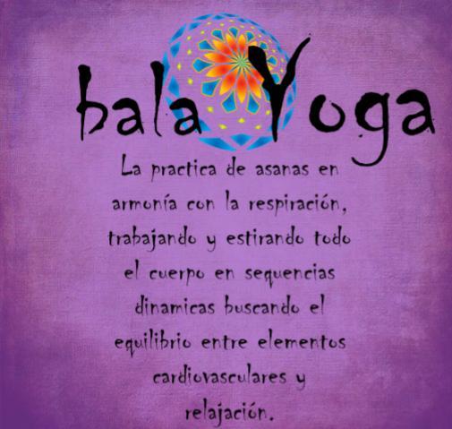 Nuevo Servicio: «Vinyasa Power Yoga, estilo de Hatha Yoga